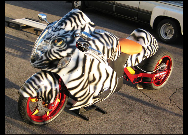 tiger bike web 5.jpg