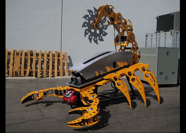 yellow orange scorpion 6.jpg