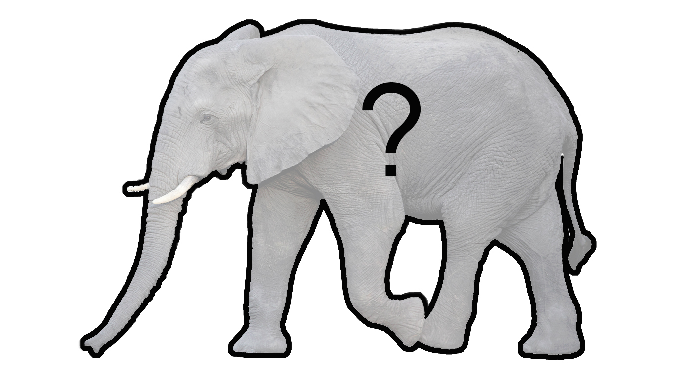 elephantintheroomimage1.jpg